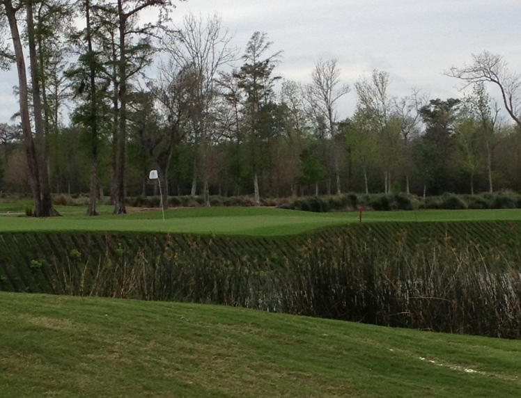 Hole 17 at TPC Louisiana in March 2012.